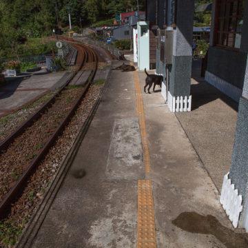 車站,嶺腳,攝影,記實,記錄